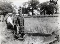 Original Marsh Harvester